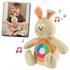 Детские игрушки Киев.Музыкальные игрушки. CHICCO Музыкальный Кролик